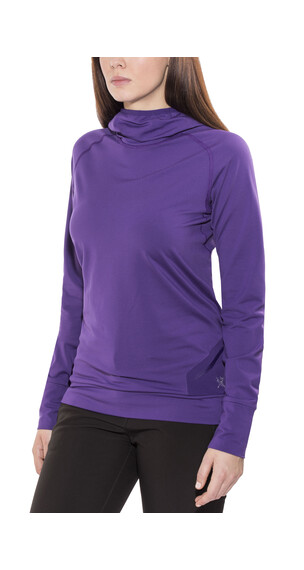 Arc'teryx Vertices sweater violet